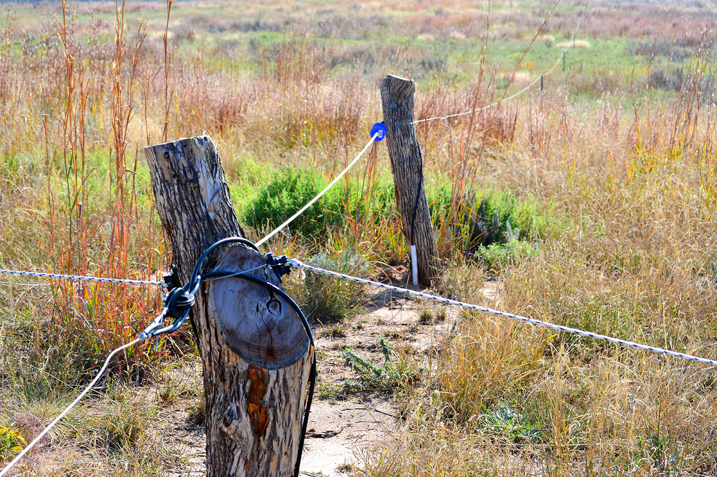 Bill Barby Ranch - Electric Fencing