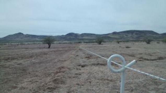 Rancho San Blas